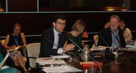 Presentations in expert workshop on private investment for Forest and Landscape Restoration, Rome, June 31 – July 1